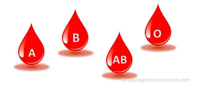 Jenis-jenis Golongan darah